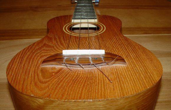 Czym są ukulele?